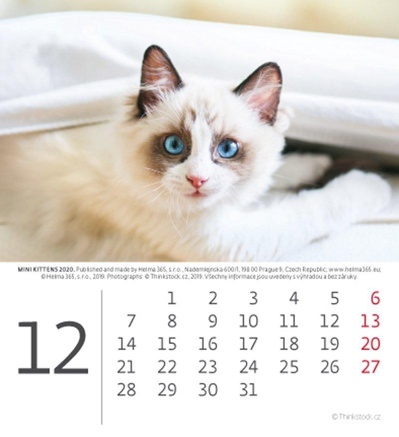 Kalendarz biurkowy 2020 mini Kotki - grudzień