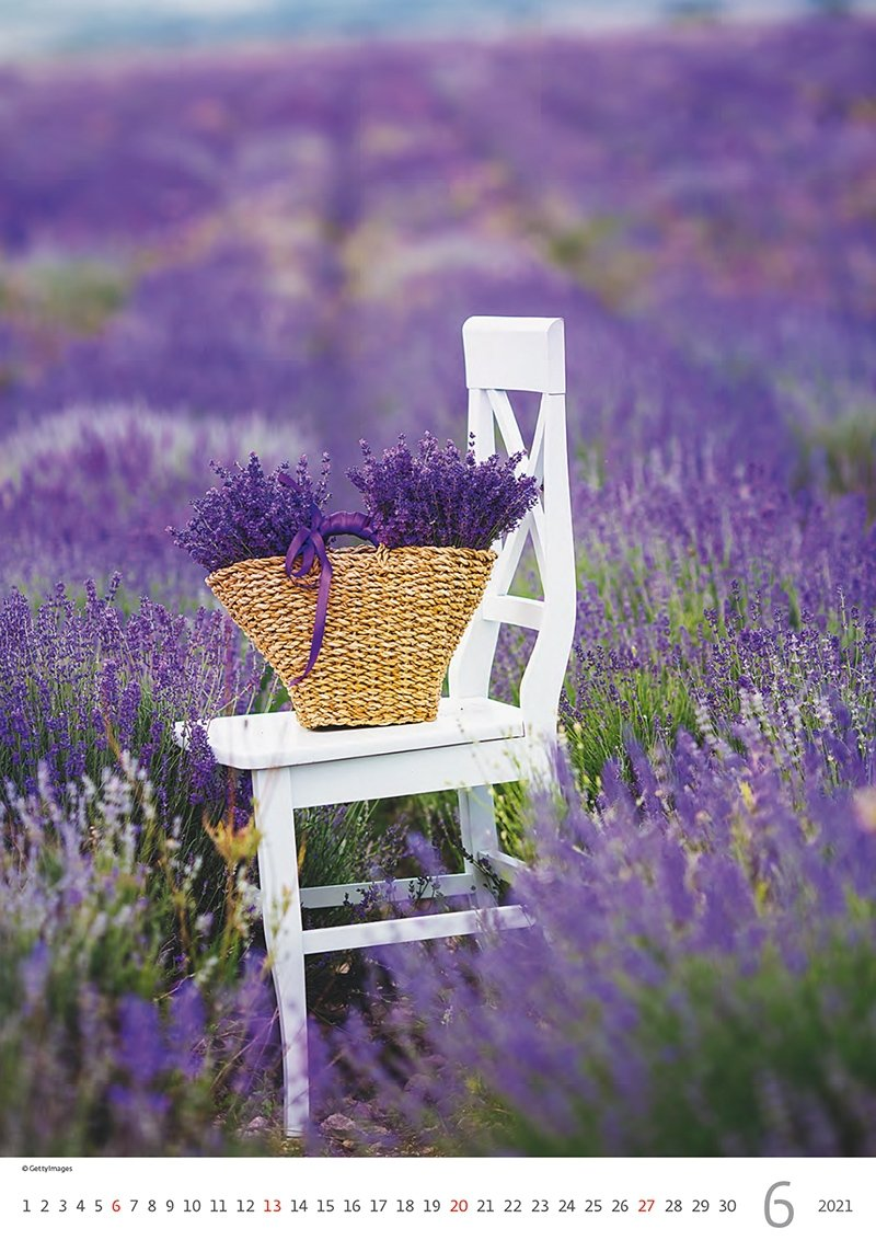 Kalendarz ścienny wieloplanszowy Provence 2021 - czerwiec 2021