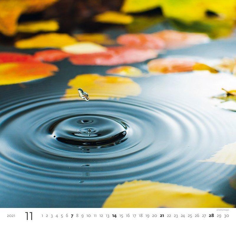 Kalendarz ścienny wieloplanszowy Aqua 2021 - listopad 2021