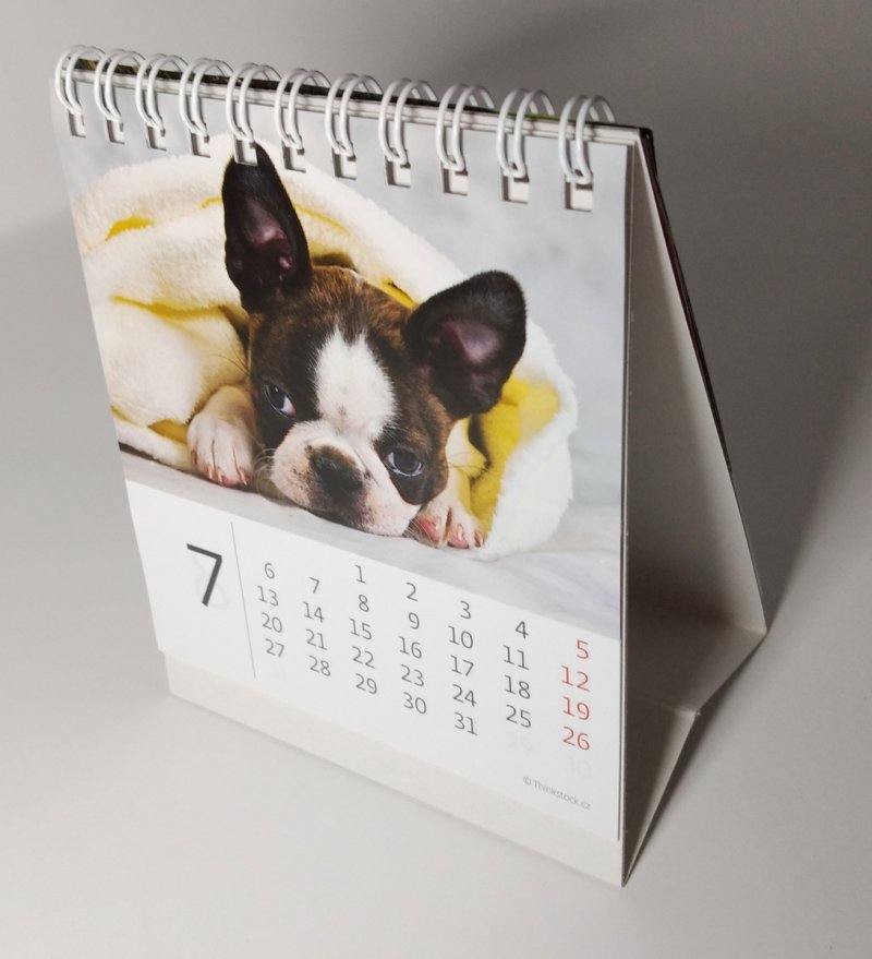 Kalendarz biurkowy mini Pieski 2020 - lipiec 2020
