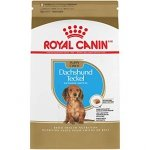 Royal 257490 Dachshund Puppy 1,5kg