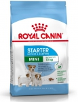 Royal 252540 Mini Starter Mother & Babydog 1kg