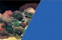 ZOLUX 354864 Tło akw. 40x60cm koralowiec/niebieski