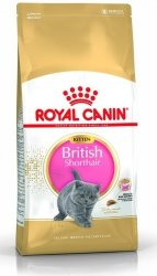 Royal 251990 British Shorthair Kitten 2kg