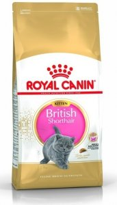 Royal 251990 British Shorthair Kitten 2kg