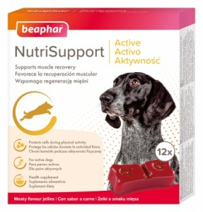Beaphar 17336 NutriSupport Dog Aktywność 12szt