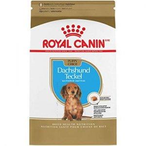 Royal 257490 Dachshund Puppy 1,5kg