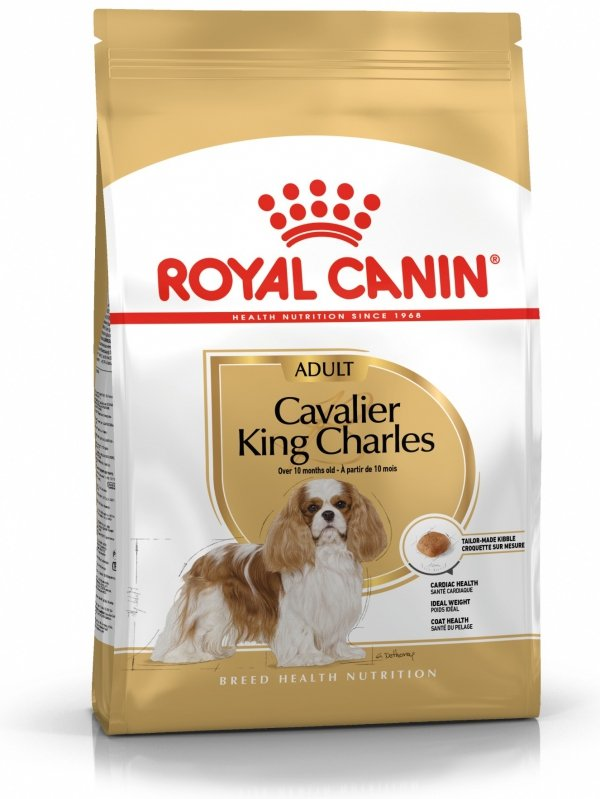 Royal 255040 Cavalier King Charles Adult 1,5kg