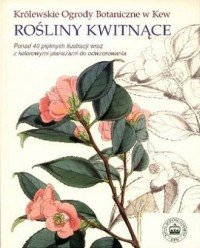Rośliny kwitnące Królewskie Ogrody Botaniczne w Kew