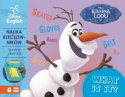 Kraina Lodu Sprytne okienka What is it Disney English