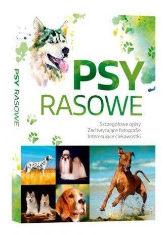 Psy Rasowe Izabela Przeczek