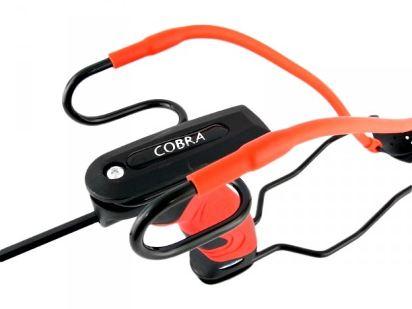 Proca Barnett Cobra