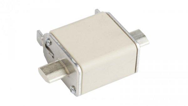 Wkładka bezpiecznikowa NH00 100A gF 500V WT-00 004114339