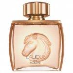 LALIQUE Pour Homme Equus woda perfumowana dla mężczyzn 75ml