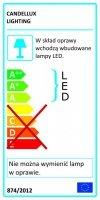 LED CLIP LAMPKA KLIPS 1X3W LED ZIELONA