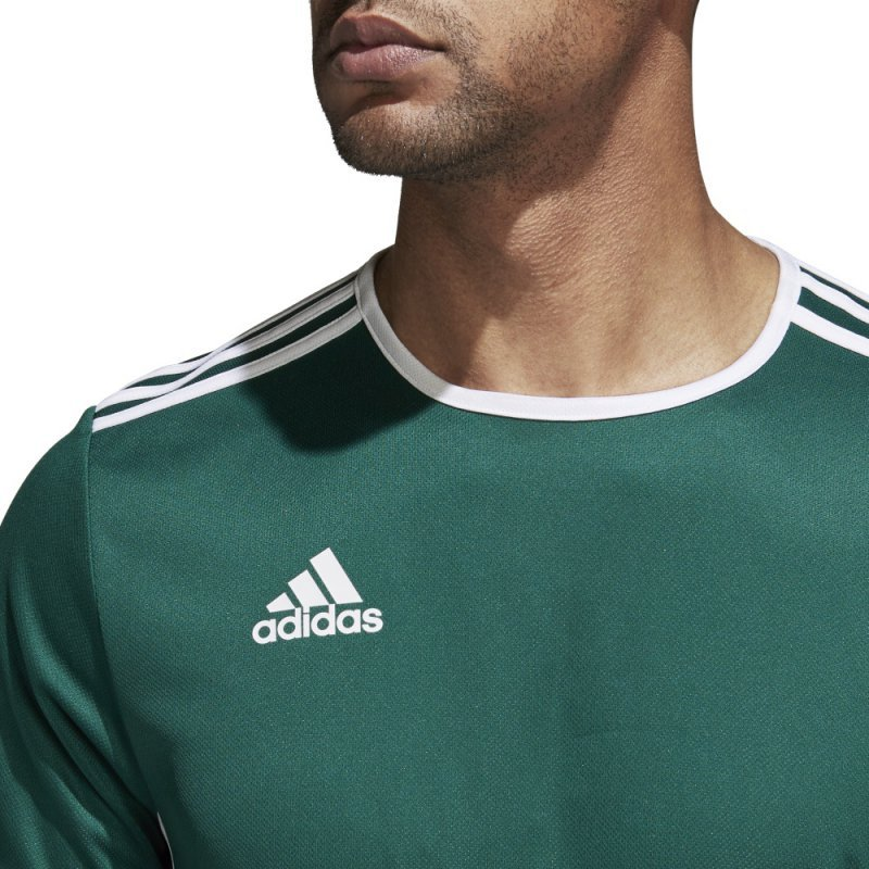 Koszulka adidas Entrada 18 JSY CD8358 zielony XL