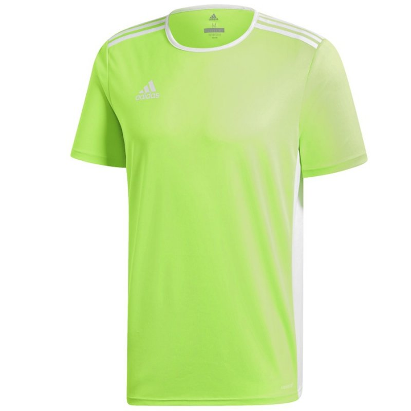 Koszulka adidas Entrada 18 JSY CE9758 zielony 152 cm