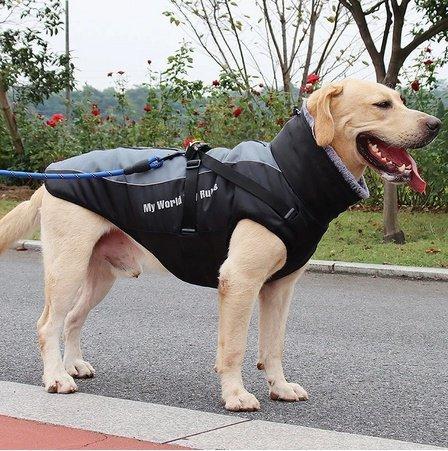 MWMR Kurtka dla psa 2XL czarno-niebieska