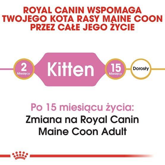 Royal Canin Maine Coon Kitten karma sucha dla kociąt, do 15 miesiąca, rasy maine coon 10kg