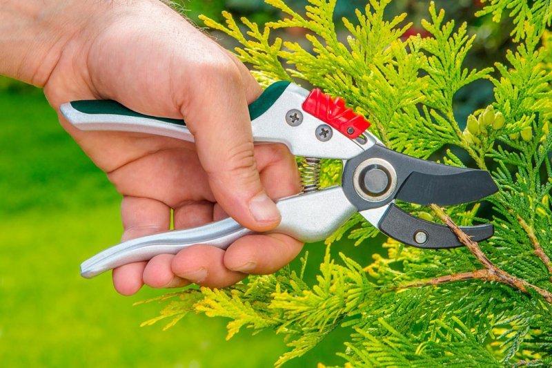 Sekator ogrodowy kowadełowy 195 mm, aluminiowy, średnica cięcia 18 mm