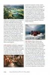 Kaleidoscope of Poland. A cultural encyclopedia - przykładowa strona