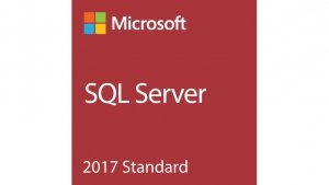 Microsoft SQL Svr Standard 2017 ENG 10CAL DVD Box  228-11033