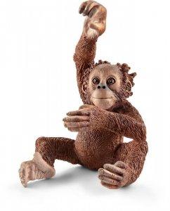 Młody Orangutan [Schleich]