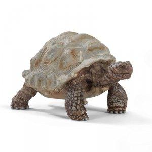 Żółw Gigant [Schleich]