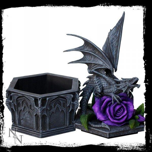 gotycka szkatułka ze smokiem od Anne Stokes - Dragon Beauty