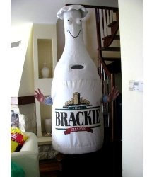 Strój reklamowy - Butelka