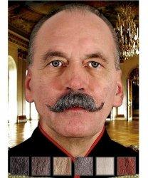 Naturalne wąsy - Wilhelm