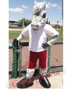Strój chodzącej maskotki - Koń Piłkarz