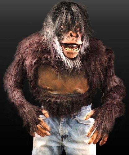 Strój reklamowy - Szympans Deluxe