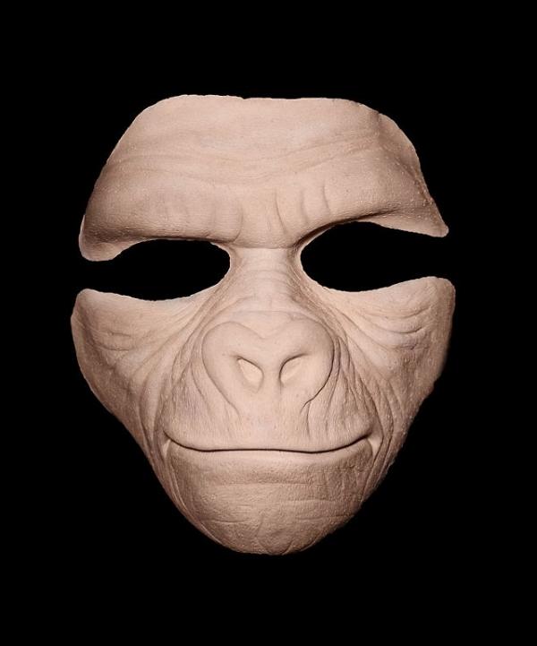 Goryl wygląd maski