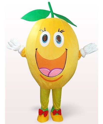 Strój reklamowy - Pomarańcza