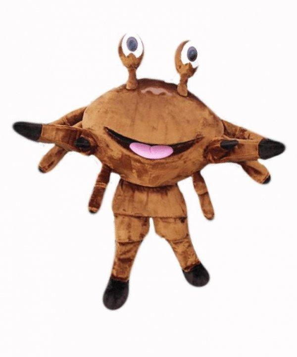 Zabawny brązowy krab