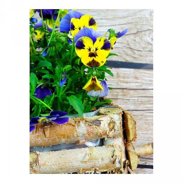 Donica brzozowa (taczka) - sklep z wiklina - zdjęcie 4