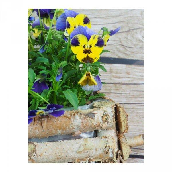 Donica brzozowa (taczka) - sklep z wiklina - zdjęcie 5