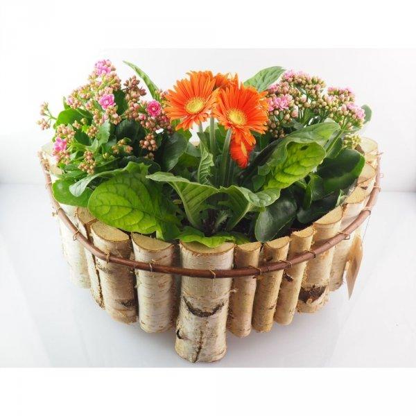 Donica brzozowa (okrągłą) - sklep z wiklina - zdjęcie
