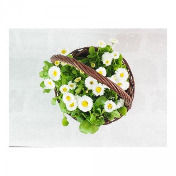 Osłonka na doniczkę z rączką (25cm) sklep z wiklina - zdjęcie 3