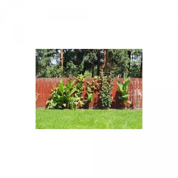 Mata ogrodowa (5/80cm) - sklep z wiklina - zdjęcie 1
