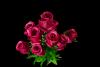 Bukiet róża z dodatkami 11 kwiatów MIX - 20YW003
