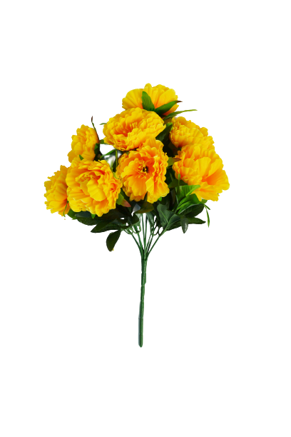 Bukiet piwonii x 8 kwiatów MIX