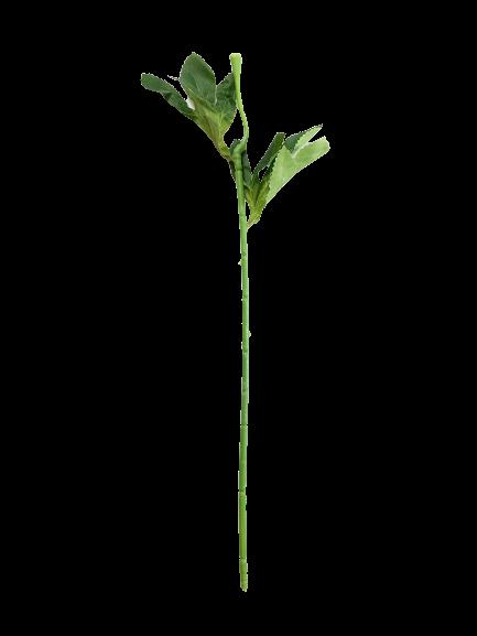 Łodyga do piwonii 45 cm