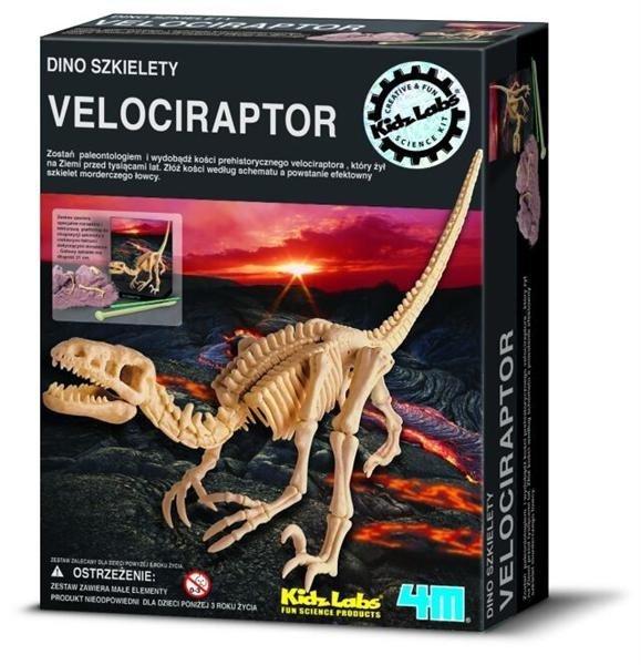 Wykopaliska Velociraptor