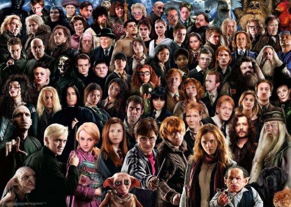 Puzzle 1000 elementów Challange Harry Potter