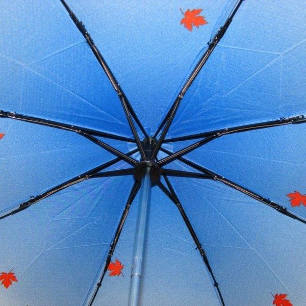 Izabela - parasolka damska składana full-auto Zest 23846