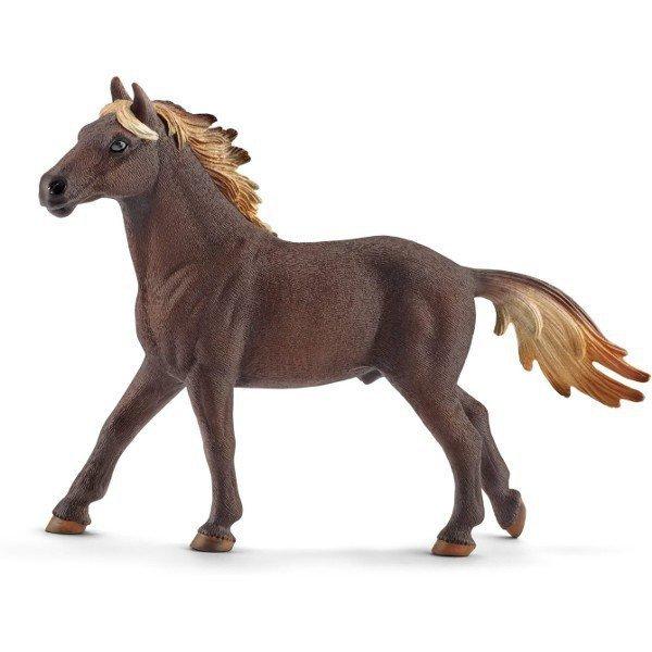 Mustang ogier