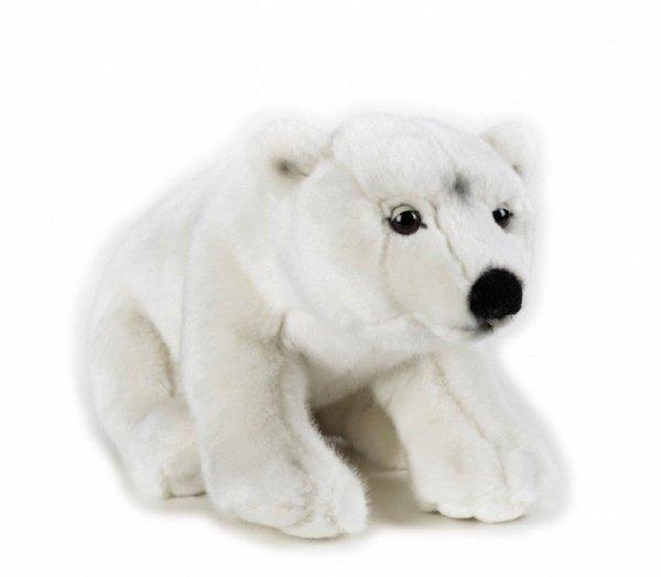 Dante Pluszak National Geographic Niedźwiedź polarny 35 cm