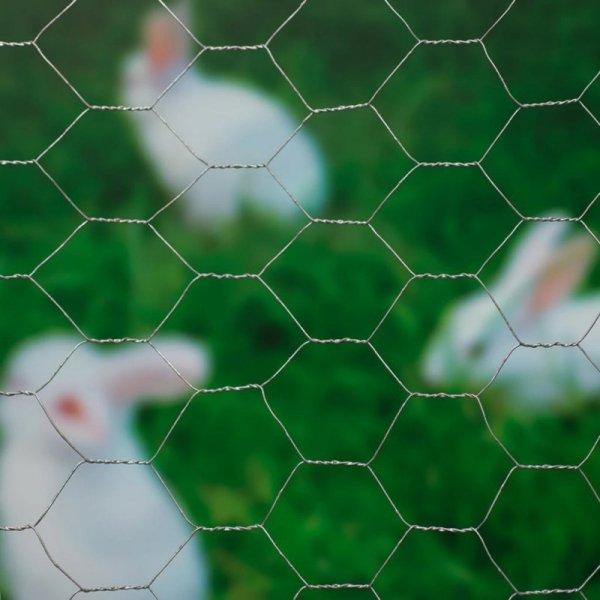 Nature Siatka z drutu, sześciokątna, 1x10 m, 40 mm, galwanizowana stal